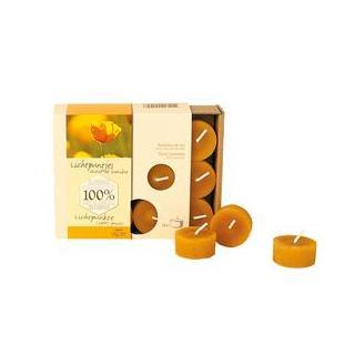 Teelicht 100% Bienenwachs (18er-Box)