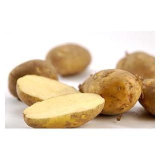 Salat-Kartoffel  fk