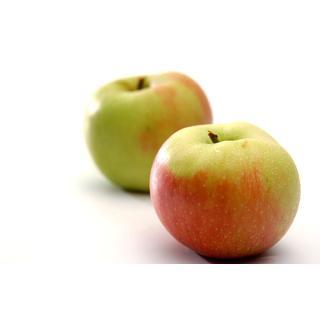 Äpfel Cox Orange
