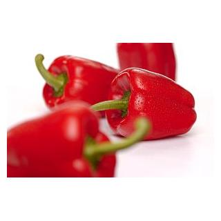 Spitzpaprika rot-